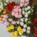 自分の花を咲かせるには